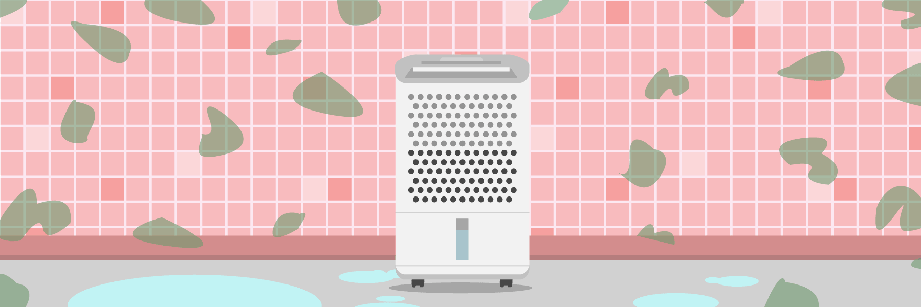 Best Dehumidifiers For Mold And Mildew