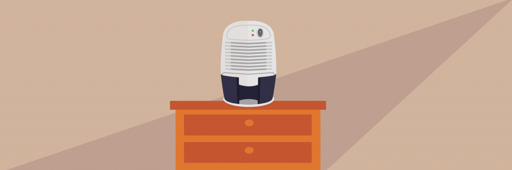 Best Small Dehumidifiers